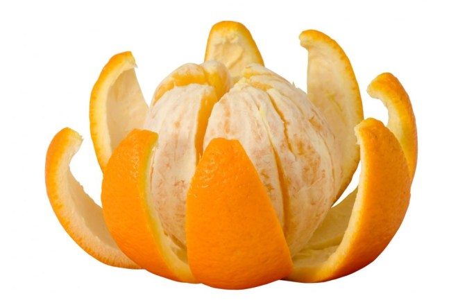Orange-Fruit-orange-34512927-1033-709.jpg
