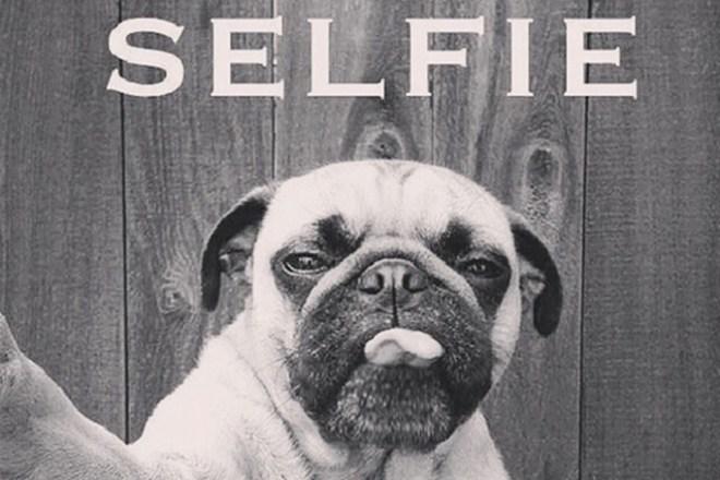 Selfie_drole.jpg